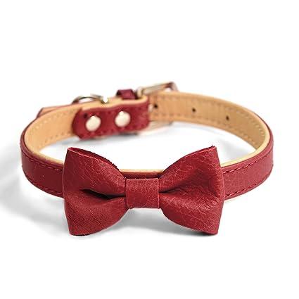 81su1uHBO5L._SX425_ amazon com martha stewart leather bow tie buckle collar for dogs