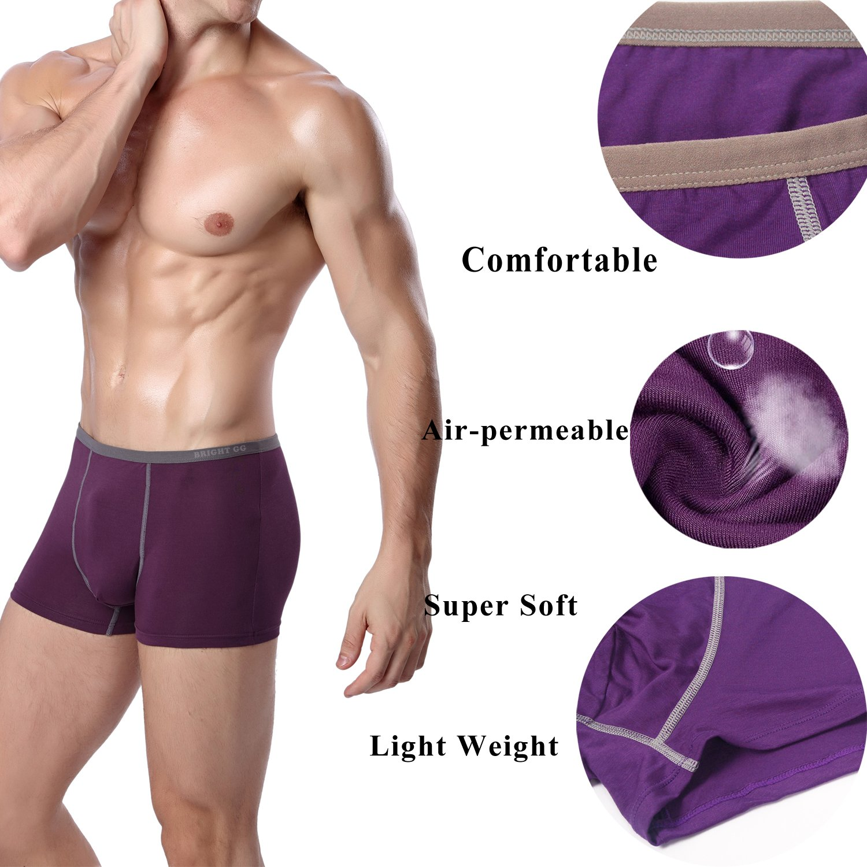BRIGHT GG Boxer Briefs Mens Underwear Men Pack Soft Modal Healthy Breathable Underwear Multipack (XL)