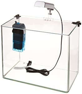 Penn Plax curved corner glass aquarium kit