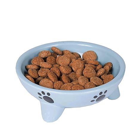 Amazon.com: Perro Platos para comida y Agua Bol lenta Feed ...