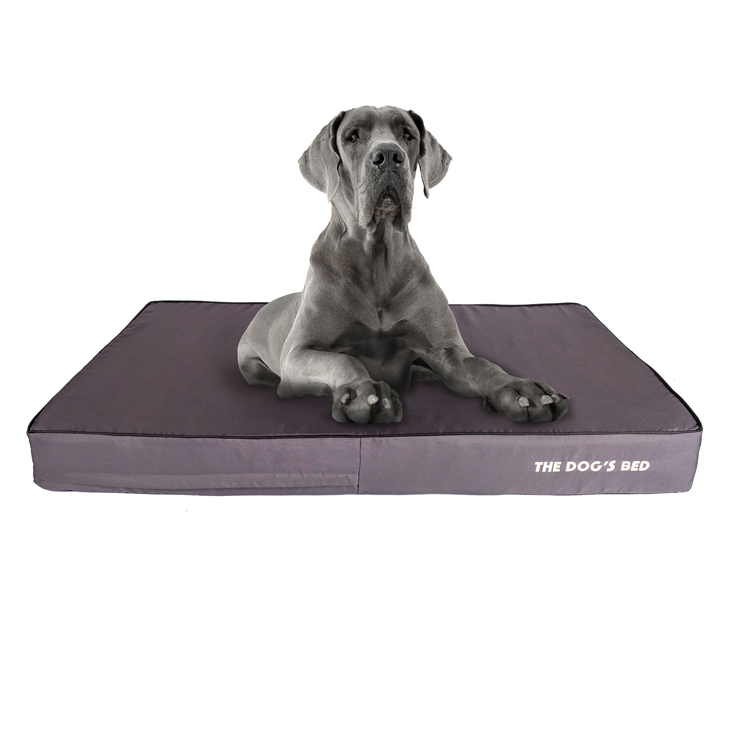 The Dog's Bed, Premium Plush Orthopedic Waterproof Memory Foam Dog Beds, 5 Sizes 8 Colors: Eases Pet Arthritis, Hip Dysplasia & Post Op Pain, Quality Therapeutic & Supportive Bed, Washable Covers