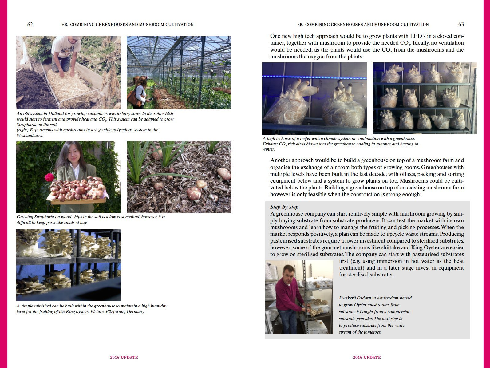 mushroom cultivation iv appropriate technologies for mushroom rh amazon co uk Morel Mushroom Cultivation Oyster Mushroom Cultivation Methods