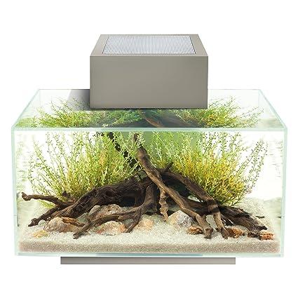 Fluval Edge 6-Gallon Aquarium with 21-LED Light, Silver