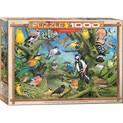 EuroGraphics Garden Birds by Joahn Francis 1000-Piece Puzzle: Toys & Games