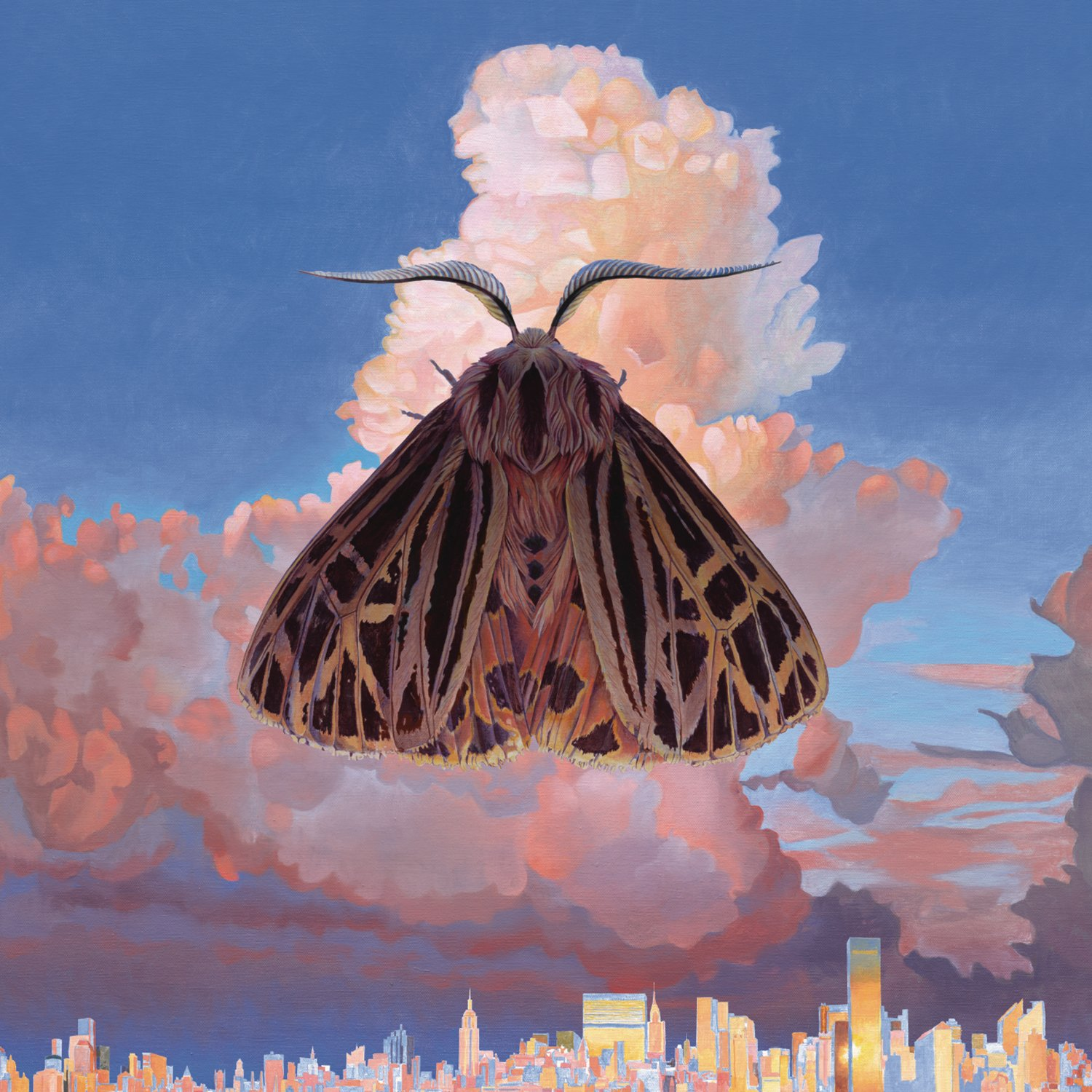 Chairlift Moth Amazon Music