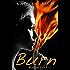 Burn (Midnight Fire Book 5)