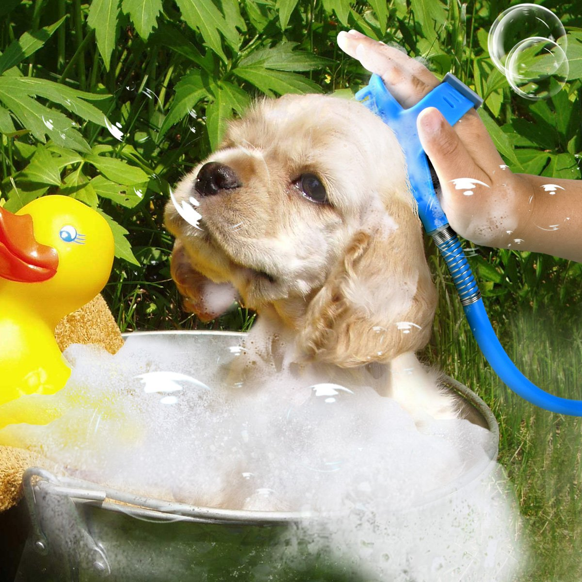 Ducking Pet Shower Sprayer with Brush, Multi-Functional Pet Bathing Tool with ON/OFF Switch for Dog, Cat, Horse Outdoor Grooming, Adjustable handheld Massage with 8 Foot Hose and 2 Hose Adapte by Ducking (Image #6)