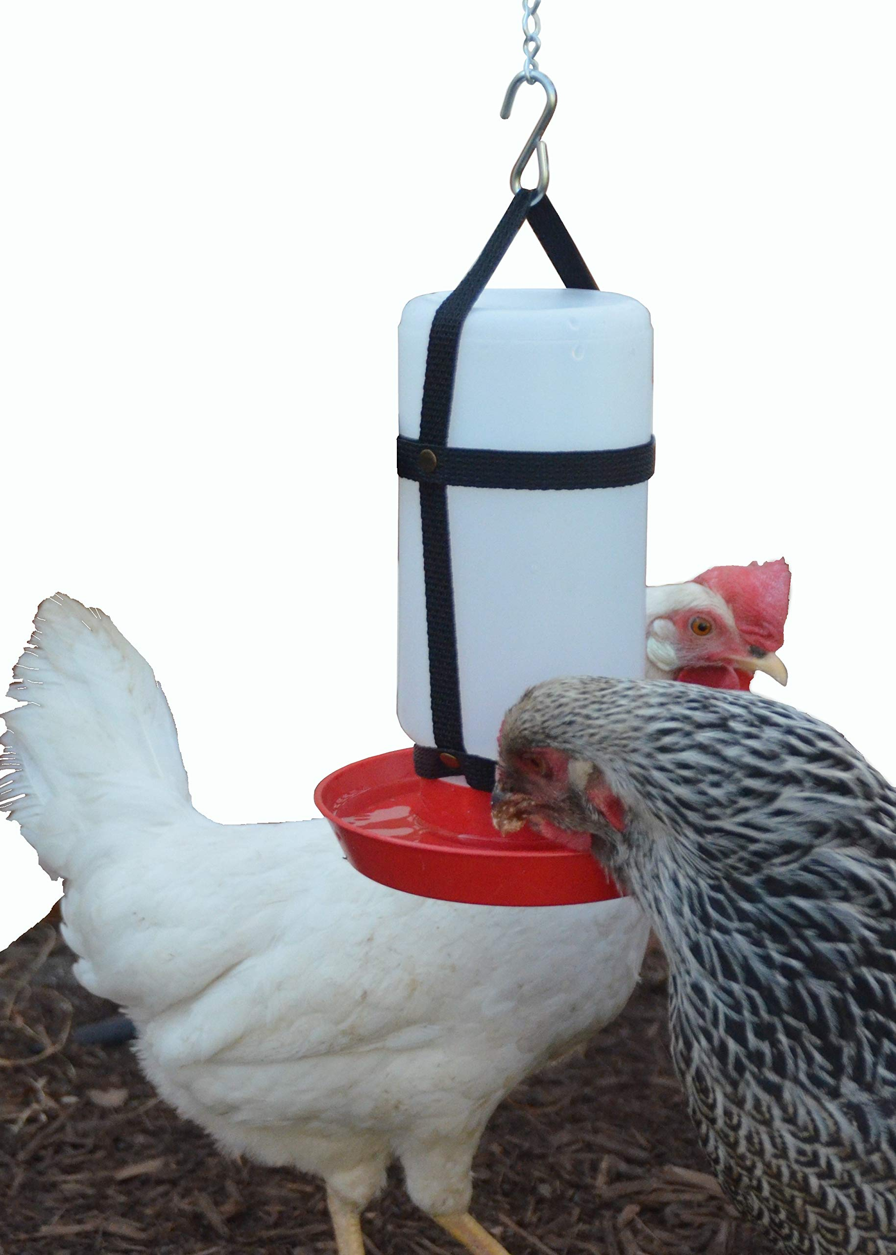 Your Happy Chicks 1 Qt. Hanging Harness with Plastic Bottle and Waterer Base by Your Happy Chicks