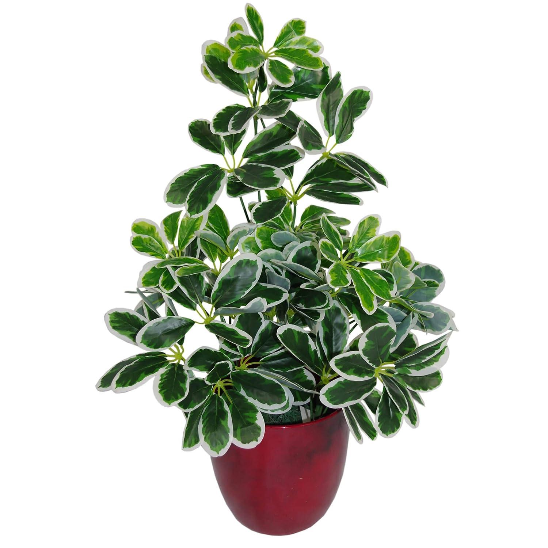 Leaf 55cm Artificial Schefflera Arboricola Umbrella Tree Potted in Black Plastic Pot, Dark Green Bush LeafUK