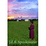 The Teacher (Amish Country Brides)
