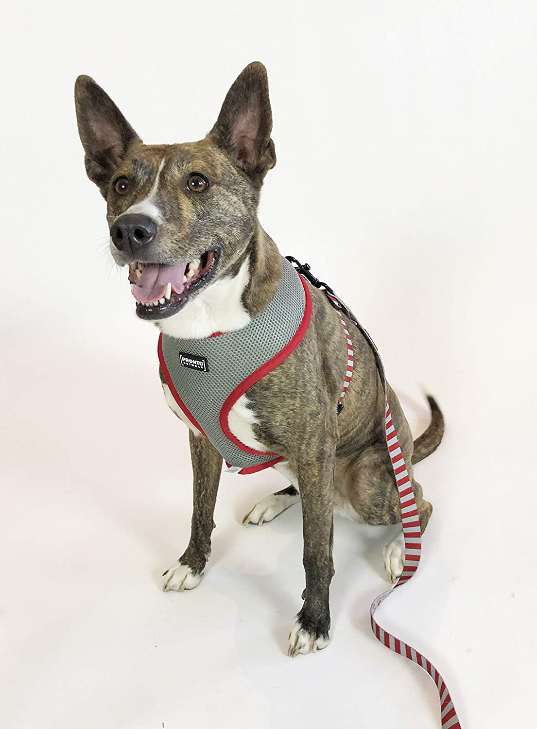 OSU Scarlet /& Gray Reversible Pet Harness Pronto Petwear NCAA Ohio State