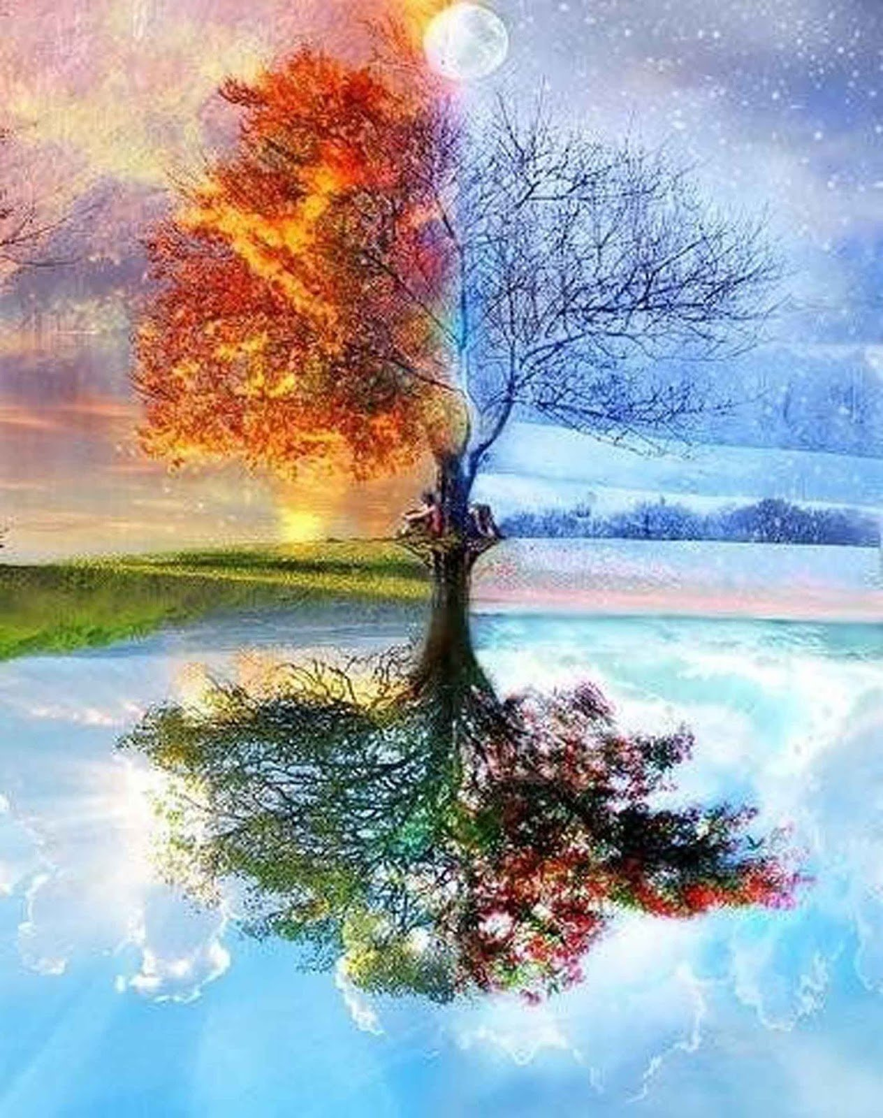 DIY Paint by Numbers for Adults DIY Oil Painting Kit for Kids Beginner - Four Season Tree of Life 16''x20'' by SROOD