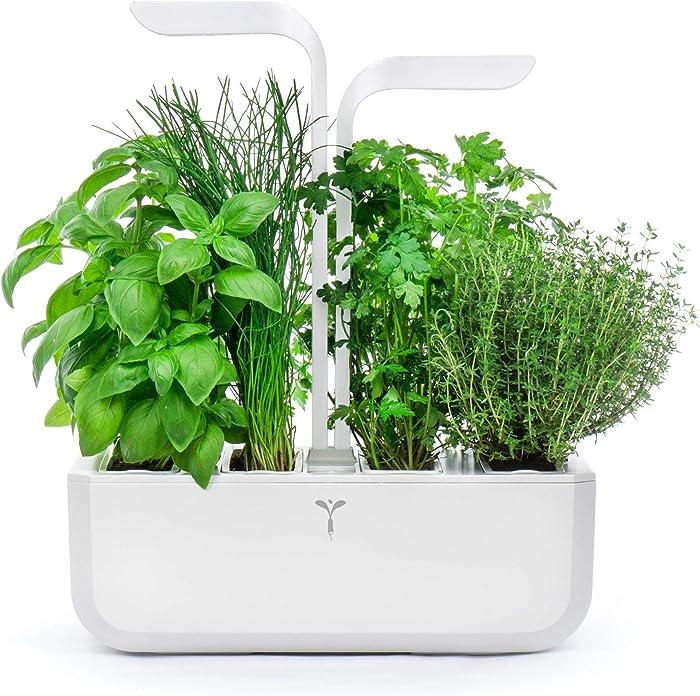 Top 10 Herb Garden Indoor Kit