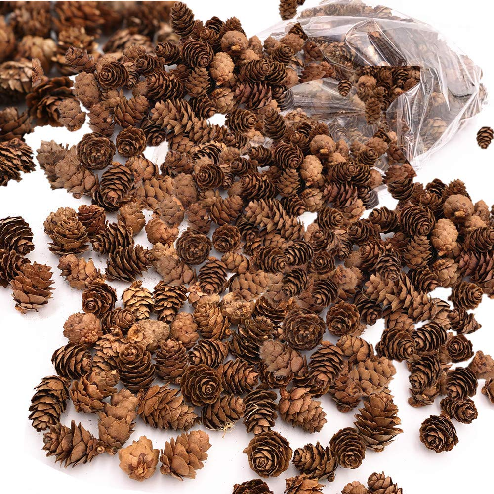 Byher Mini Pinecones in Bulk for Fall and Christmas Crafts - Approx. 450 Small Assorted Sized Pine Cones (2lb - Approx. 450pcs)
