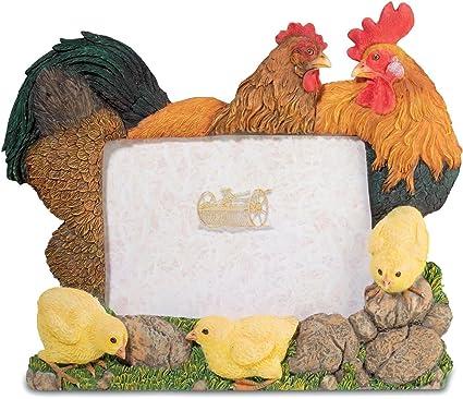 Marco de fotos gallo gallina y pollitos