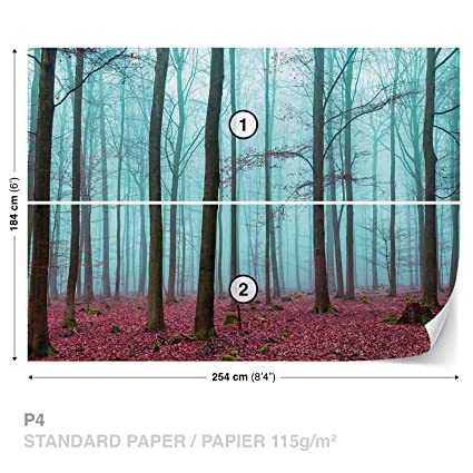 Nature Wood Forest Wall Mural Photo Wallpaper Room Decor 2657WS