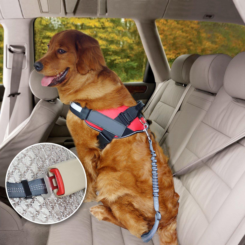 Reflective Pet Seat Belt Universal for Most Cars Adjustable Dog Car Restraint with Elastic Nylon Bungee Buffer for Pets Safety AMZNOVA 2 Pack Dog Seat Belt 4 Colors