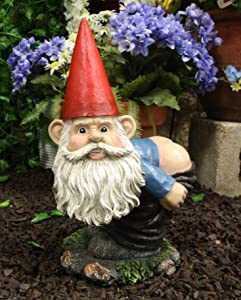 """Ebros 13.5"""" Tall Naughty Fun Prank Bare Butts Mooning Grumpy Garden Gnome Statue Patio Outdoor Pool Deck Figurine As Whimsical Decor Magical Fantasy 'Nature Calls' Dwarf Gnomes"""