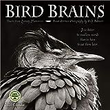 Bird Brains 2020 Wall Calendar: Truths from