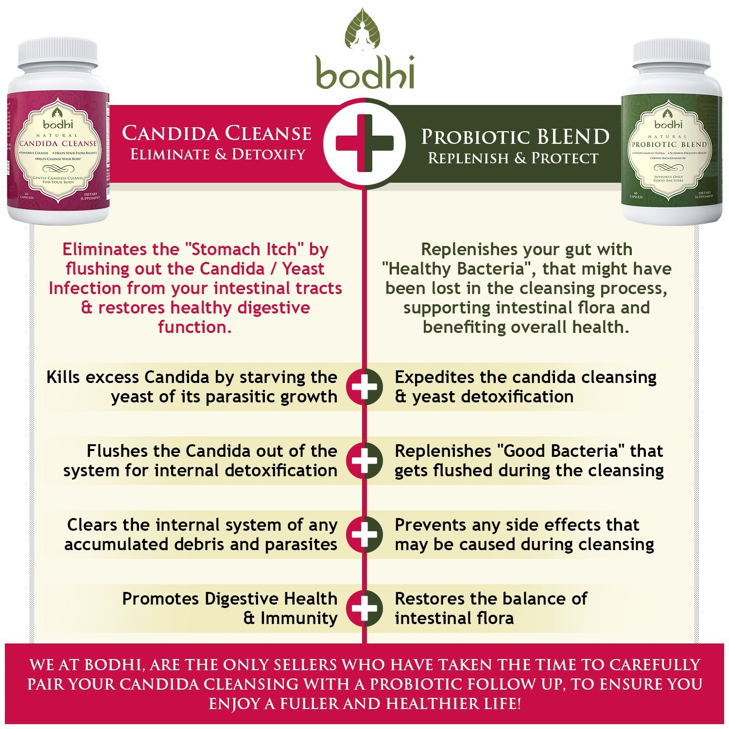 Candida probiotic herbal store buy - Amazon Com Bodhi Natural Candida Cleanse And Probiotic Blend Supplement 60 Capsules Health Personal Care