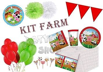 Partylandia Kit de Fiesta de cumpleaños Animales de Granja ...