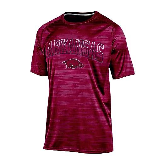 17cba712 Champion NCAA Arkansas Razorbacks Men's Short Sleeve Crew Neck RA Tee,  Large, Cardinal