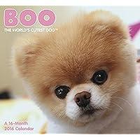 Boo The World's Cutest Dog 2016 Calendar