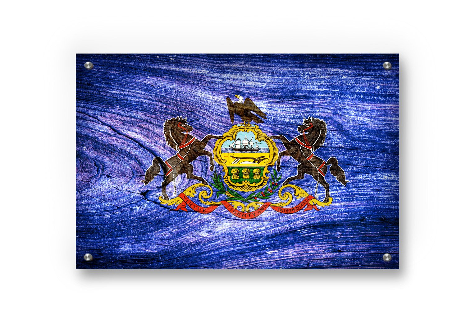 Pennsylvania State Flag Graffiti Wall Art printed on Brushed Aluminum by Buttered Kat (Large (33 x 22 Inches))
