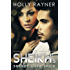 The Sheikh's Secret Love Child (The Sheikh's Baby Surprise Book 2)