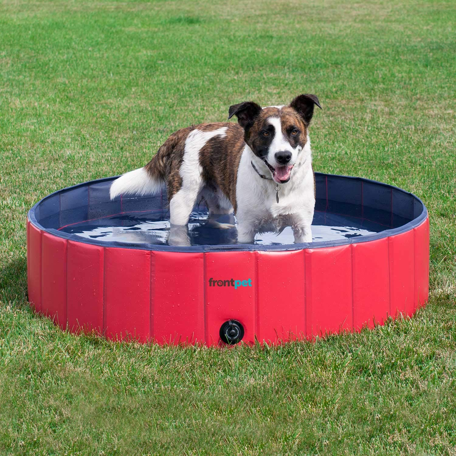 FrontPet Foldable Large Dog Pet Pool Bathing Tub, Kiddie Pool, 50 Inch X 12 Inch by FrontPet