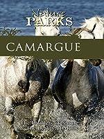 Nature Parks CAMARGUE Provence, France