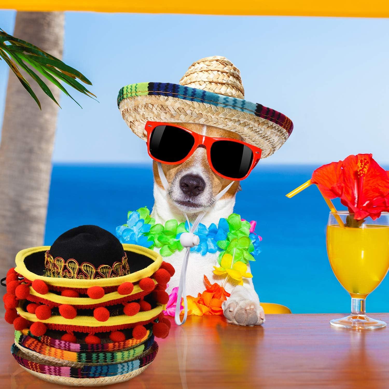 6 Piezas Mini Sombrero Mexicano Sombreros de Paja Lindo Mini Sombreros Divertido de Fiesta para Fiesta Carnaval Verano Decoraciones de Fiesta Tem/ática Mexicana Favor de Fiesta