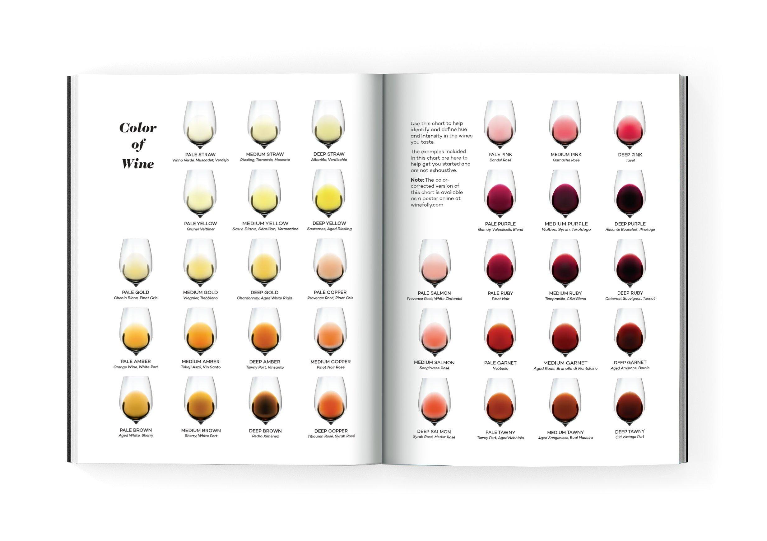 Wine Folly. Magnum Edition: Amazon.es: Madeline Puckette ...