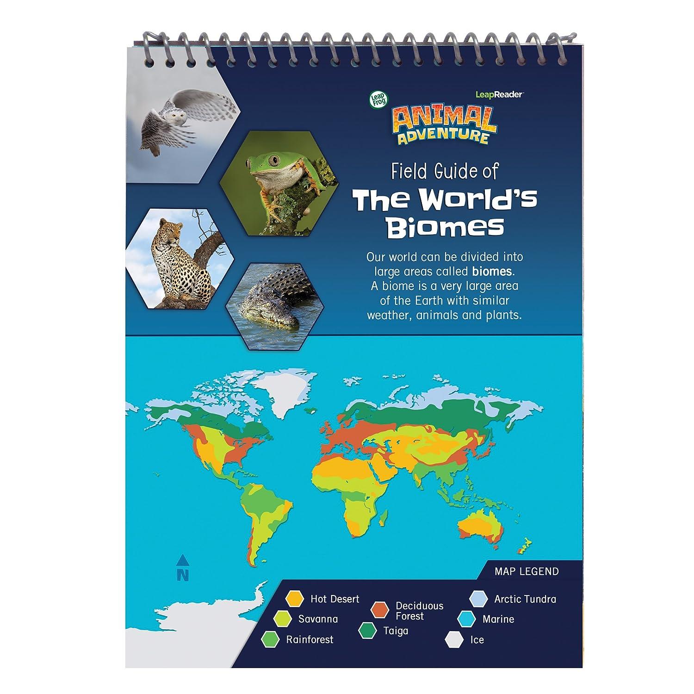 Leapfrog leap reader animal adventure quest amazon toys games gumiabroncs Images