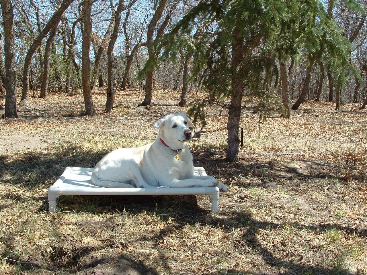 Kuranda Almond PVC Chewproof Dog Bed - XXL (50x36) - Vinyl Weave - Birch Forest