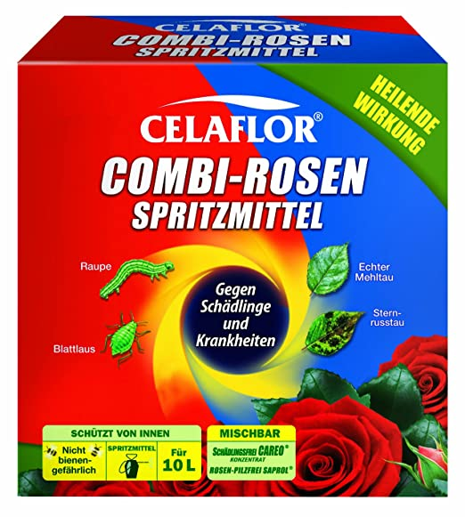 Rosenrost Behandlung celaflor combi rosenspritzmittel 2 x 100 ml amazon de garten