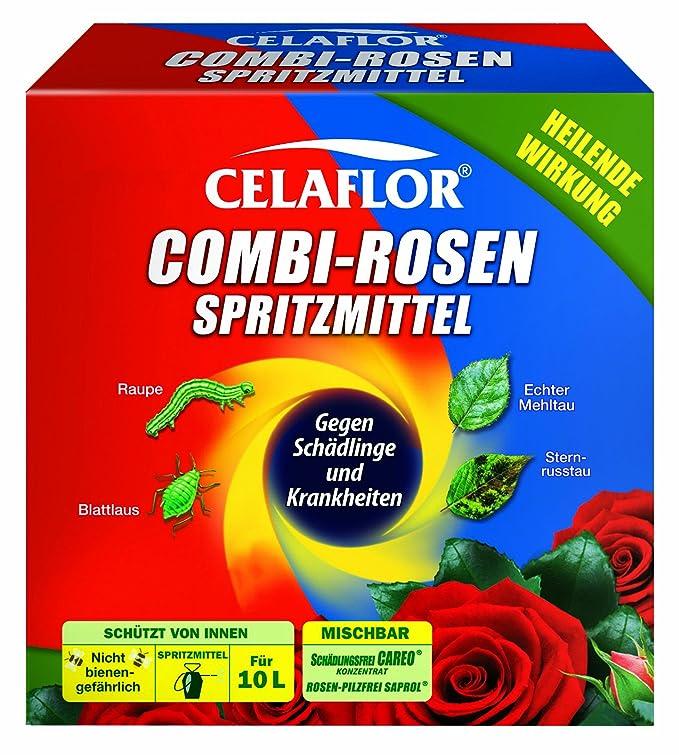 Mittel Gegen Mehltau celaflor combi rosenspritzmittel 2 x 100 ml amazon de garten