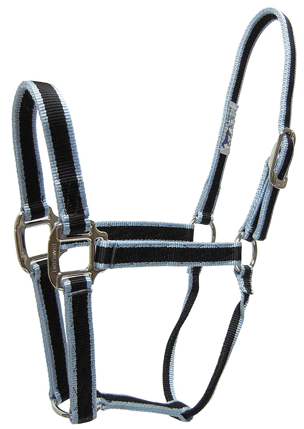 Hamilton 1-Inch 3-Stripe Fashion Nylon Quality Horse Halter 800 to 1100-Pound, Sky bluee