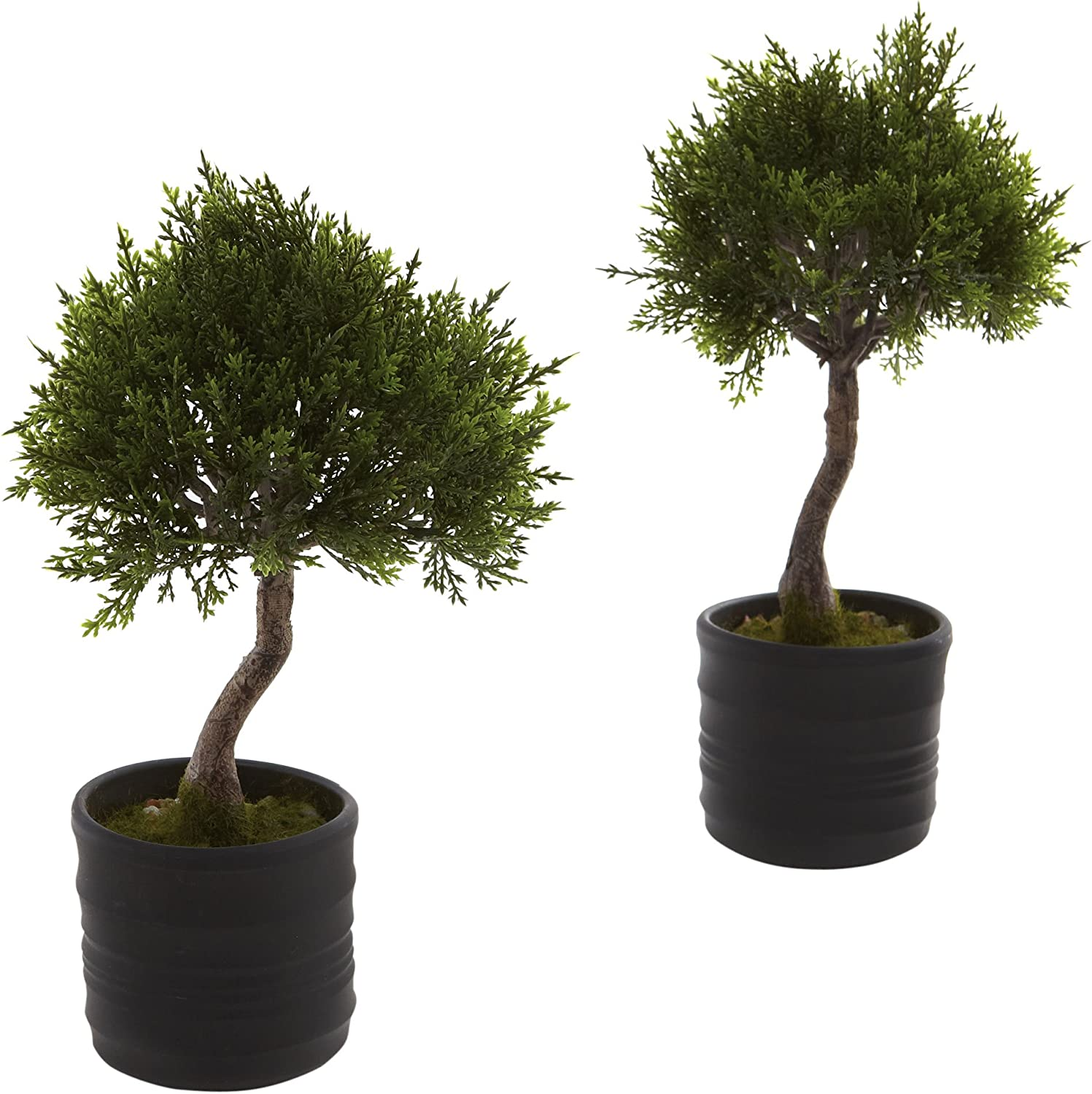 Amazon Com Nearly Natural 4965 S2 Cedar Bonsai Artificial Tree With Planter Green Set Of 2 6 75 X 6 75 X 22 5 Home Kitchen