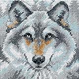 """Chiamata del lupo Needlepoint Mini Kit-5 """"X 5"""" cucita In filo"""