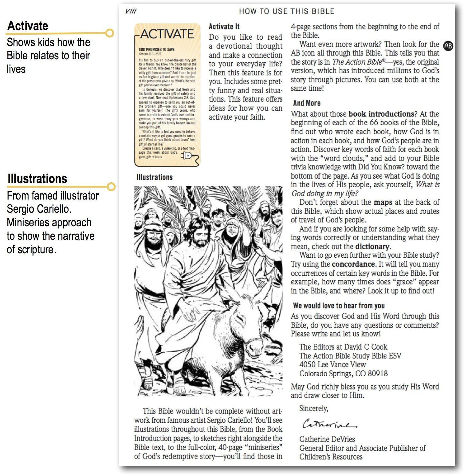 The Action Bible Study Bible ESV (Gray)