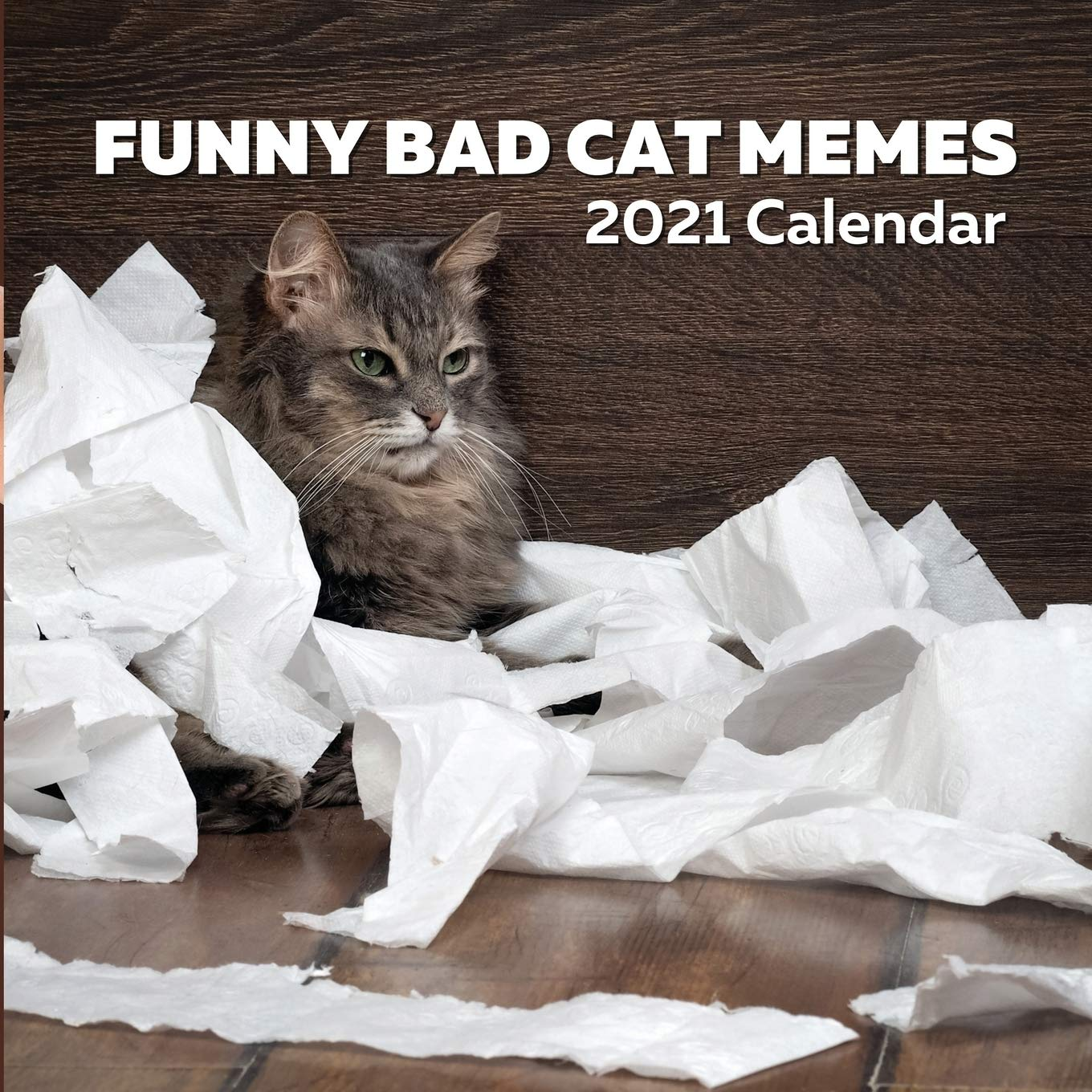 Funny Bad Cat Memes 2021 Calendar Hicks Shimmer 9798694978781 Amazon Com Books As far as we can tell, nothing has changed. funny bad cat memes 2021 calendar