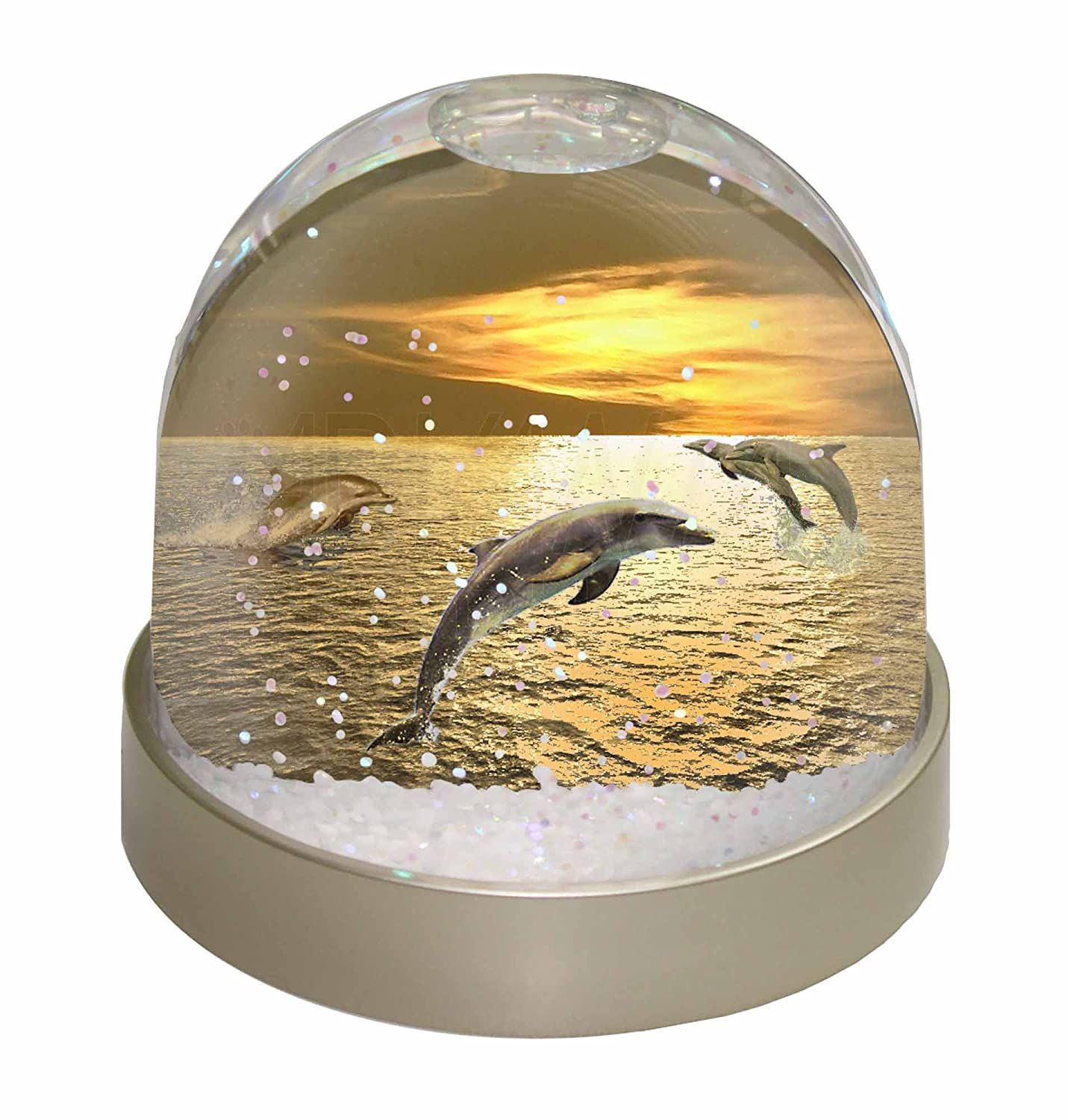 Advanta Gold Sea Sunset Dolphins Snow Dome Globe Gift, Multi-Colour, 9.2 x 9.2 x 8 cm Advanta Products AF-D4GL