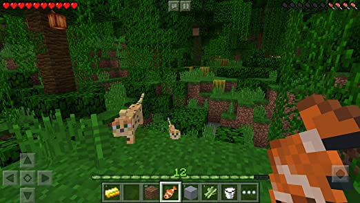 Amazon.com: Minecraft: Appstore for Android on minecraft kitchen sink, minecraft food, minecraft kitchen set, minecraft mansion kitchen, minecraft modern kitchen, minecraft furniture, minecraft simple kitchen, minecraft modern bedroom, minecraft kitchen blueprints, minecraft pe bedrooms, minecraft big kitchen, minecraft shower, minecraft refrigerator, minecraft fireplaces, minecraft medieval kitchen, minecraft table, minecraft kitchen decorations, minecraft kitchen tutorial, minecraft kitchen things, minecraft kitchen tools,