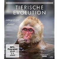 David Attenborough: Tierische Evolution [Blu-ray]