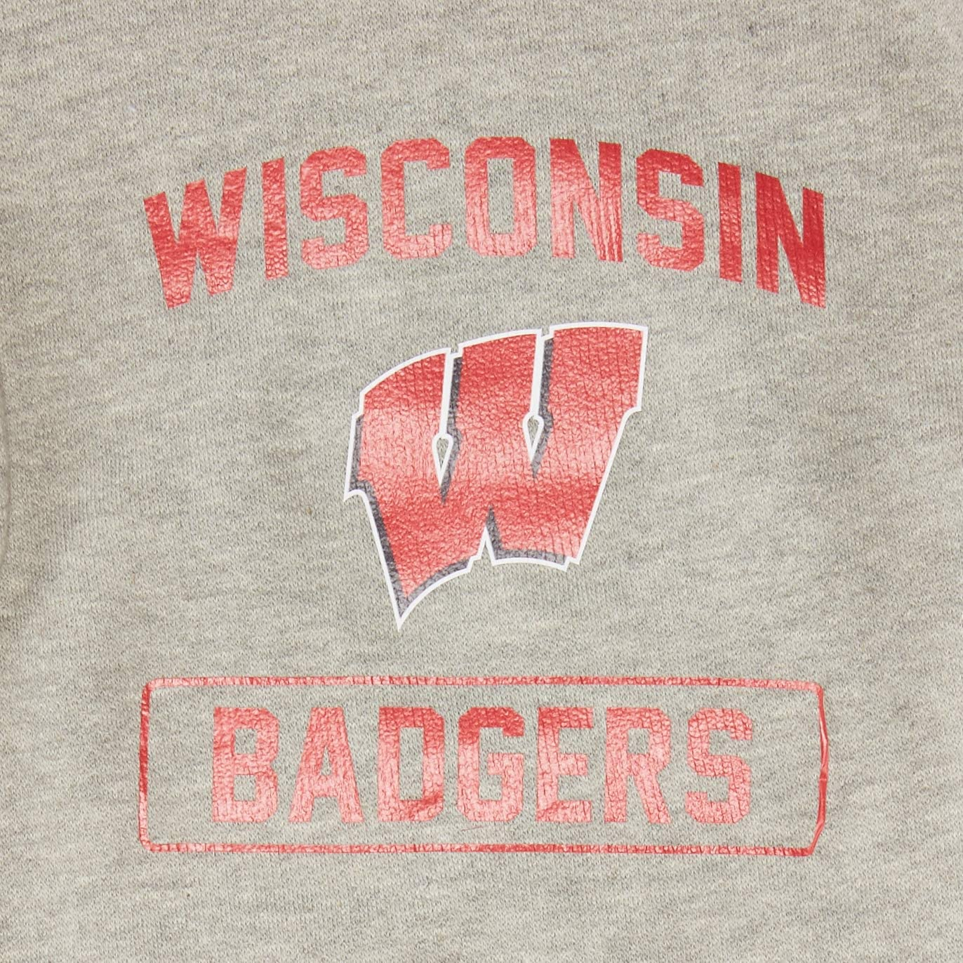 NCAA Wisconsin Badgers LittlearthNCAA Pet Hooded Crewneck Type