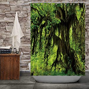 C COABALLA HOH Rainforest in Olympic National Park Washington State,Shower Curtain with Hooks 84''Wx72''H