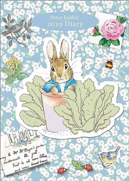 Amazon.com : Beatrix Potter 2019 Journal Diary 20 x 15cm ...