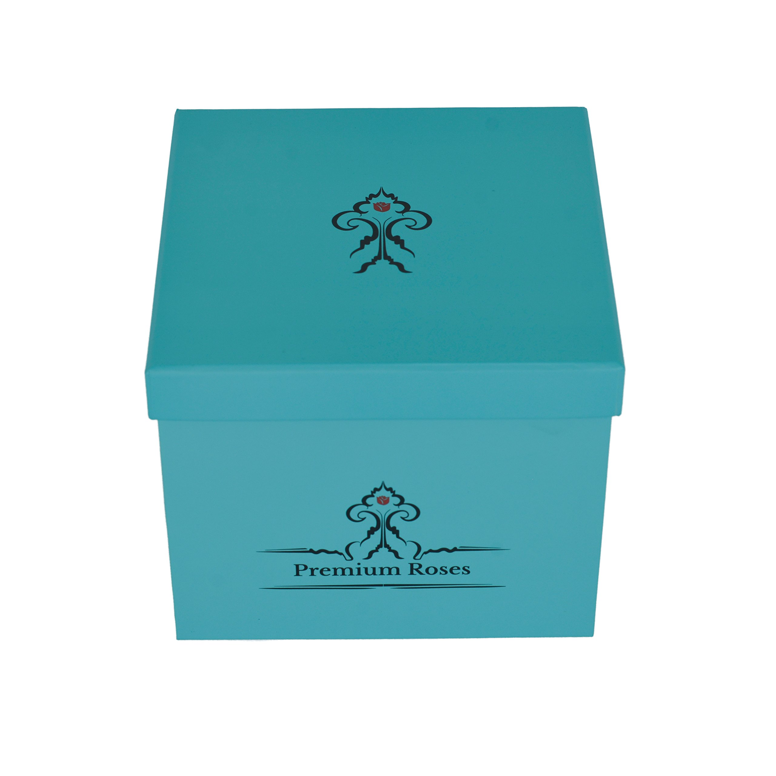 Premium Roses | Model Turquoise| Real Roses That Last 365 Days | Roses in a Box| Fresh Flowers (Blue Box, Medium) by Premium Roses (Image #7)