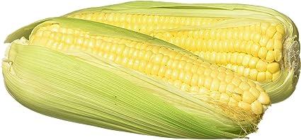 Fresh Sweet Corn, American, 2 Pieces Pack